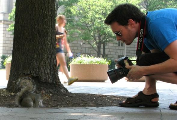 L & DC squirrel