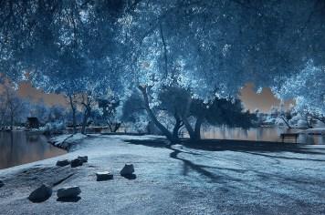 Santee Lakes in Santee by Bill Gracey