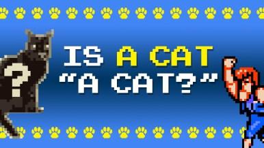 Is a cat a cat?