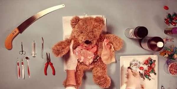 Anatomy Lessons: Teddy