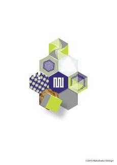 Hexagon-project-054