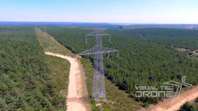 Vigilancia forestal con drones.