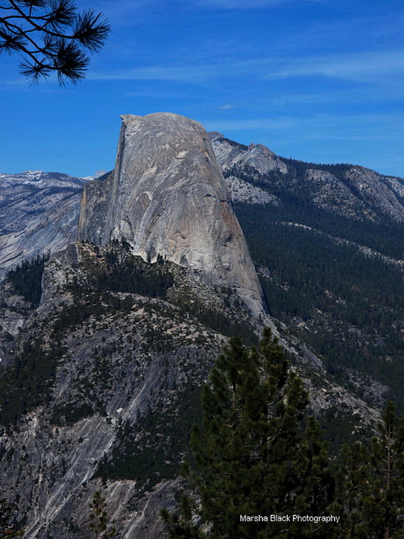 Half Dome in Yosemite National Park | Marsha J Black