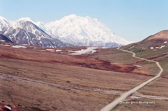 Road through Denali National Park | Marsha J Black