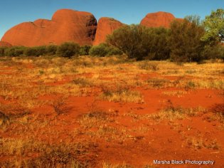 Walpa Gorge in the Australian Outback | Marsha J Black