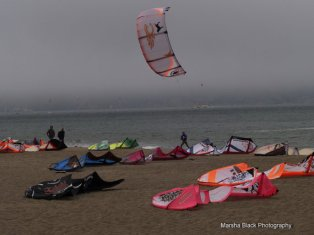 Kite-surfing at Chrissy Field in San Francisco | Marsha J Black