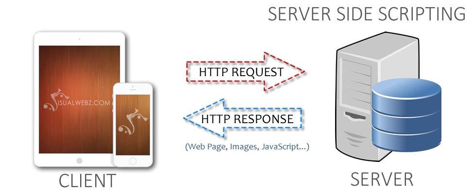 Server Side Scripting Seattle Web Design Visualwebz Com