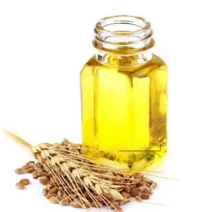 Растительное масло из корней пшеницы