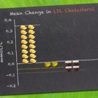 Kokosolie verhoogt het cholesterol niet