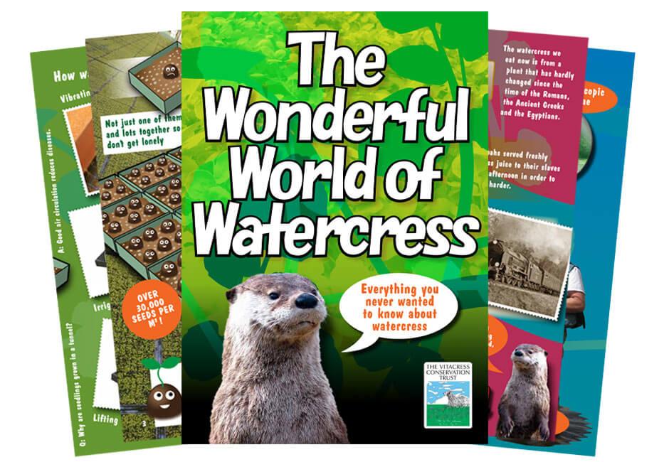 The Wonderful World of Watercress