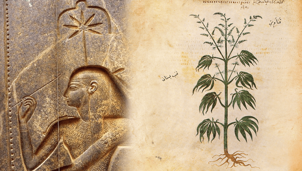 The Egyptian goddess Seshat depicted with a hemp leaf