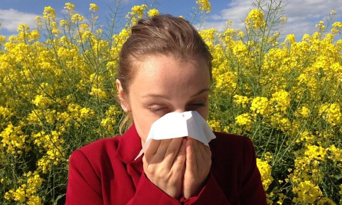 Hausmittel gegen Allergien