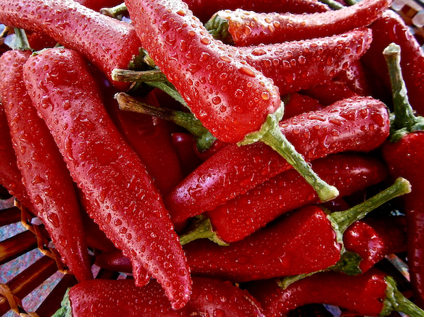 pimenta-sabor-e-saude-2