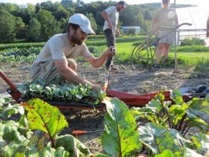 Farmer Worker Learning Collaborative