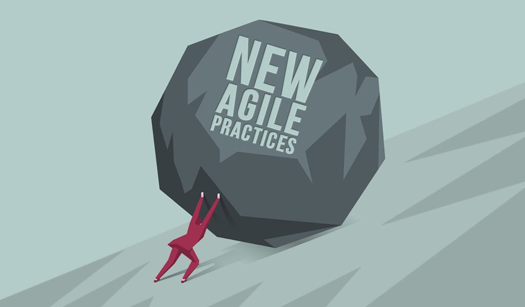 Challenges with Agile – Organizations that Don't Want to Change