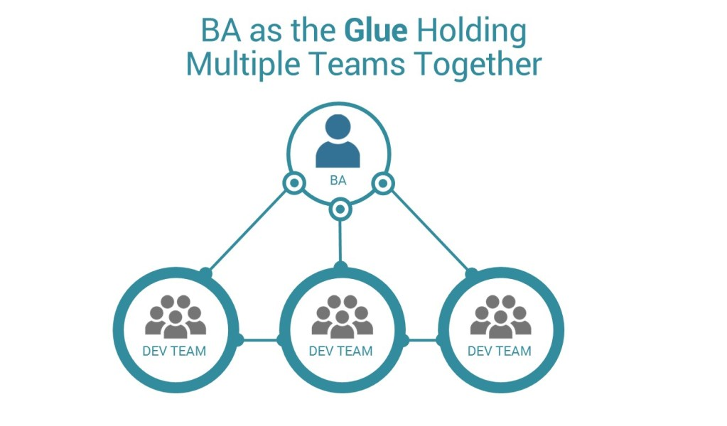 BA as the Glue that Holds Multiple Teams Together