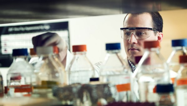 Male researcher in the lab