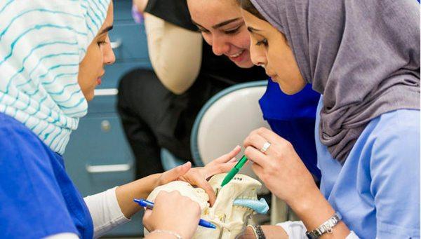 Students looking at skull