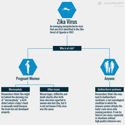 who's at risk for zika