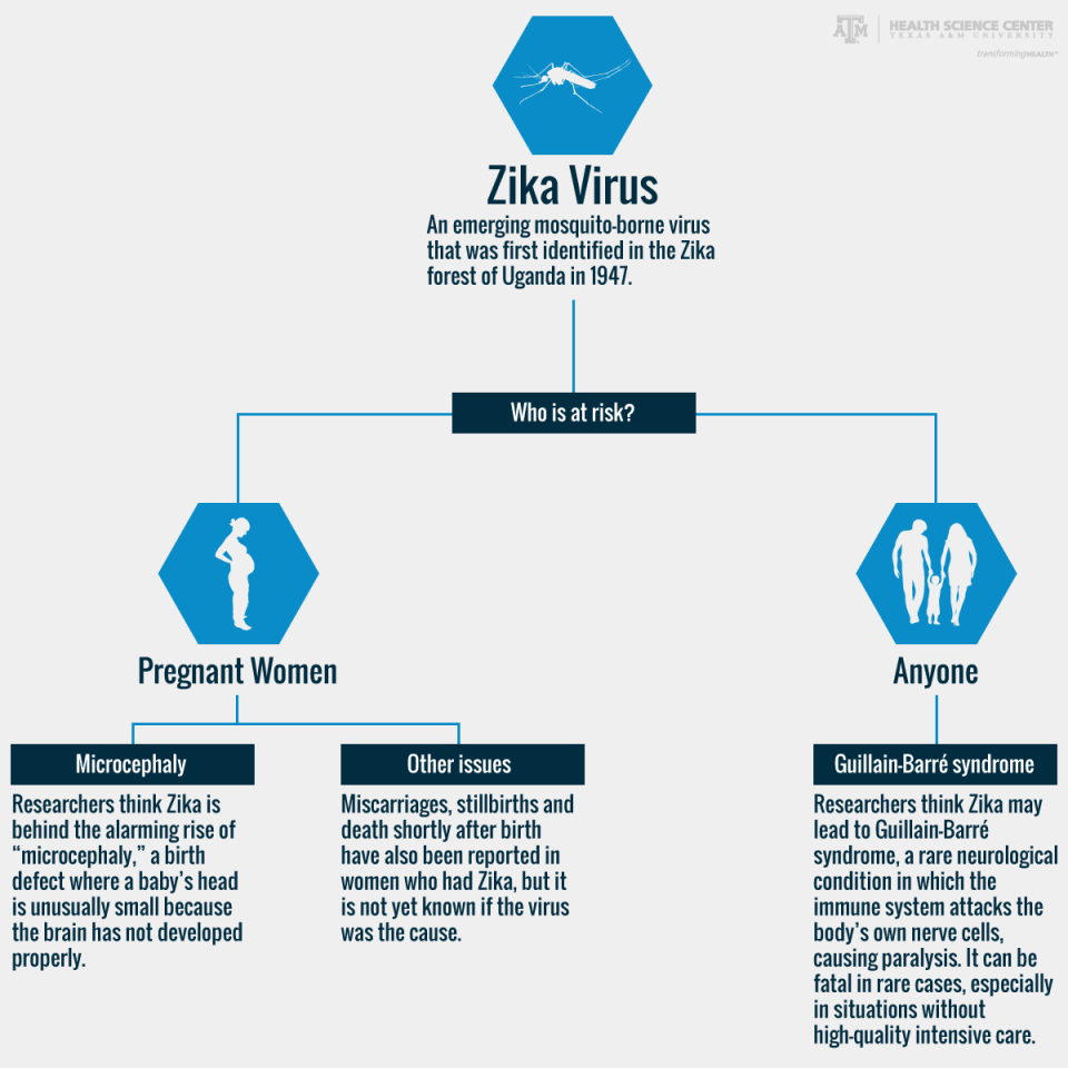 who is at risk for zika virus