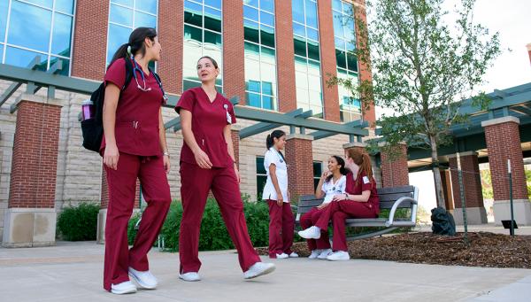 Texas A&M College of Nursing dean receives distinguished achievement award