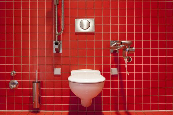 health habits - flushing