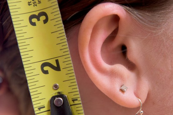 Your cartilage makes up a big part of your anatomy