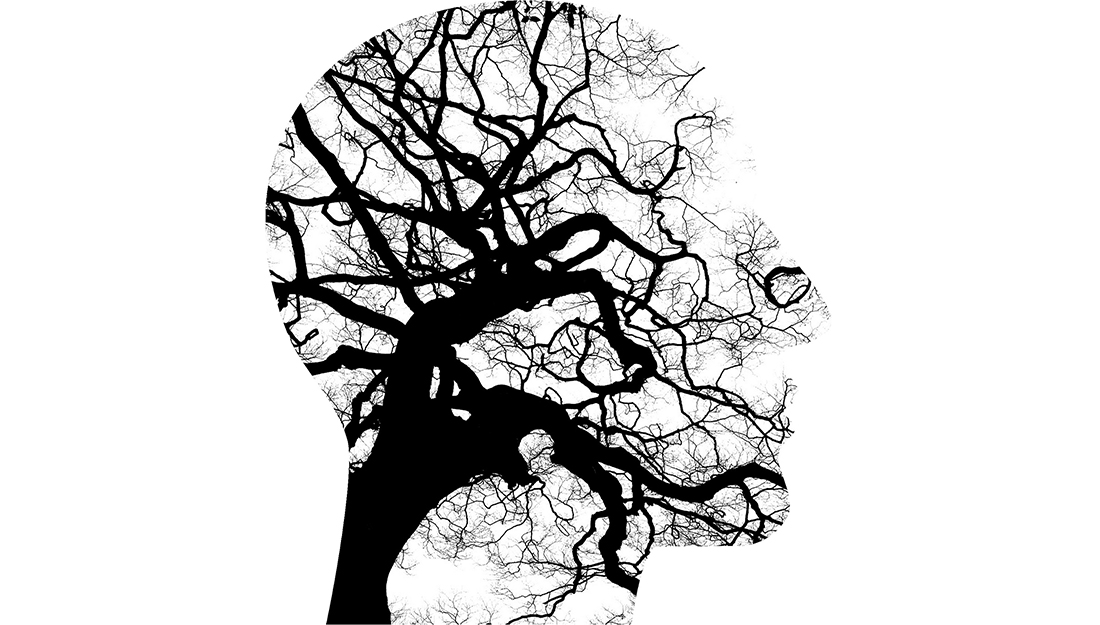 Addressing the psychiatry shortage_A picture of a tree within the shape of a human head