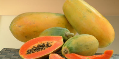 benefits offered by the papaya