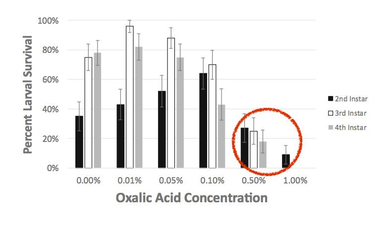 sopravvivenza larve acido ossalico 48 ore