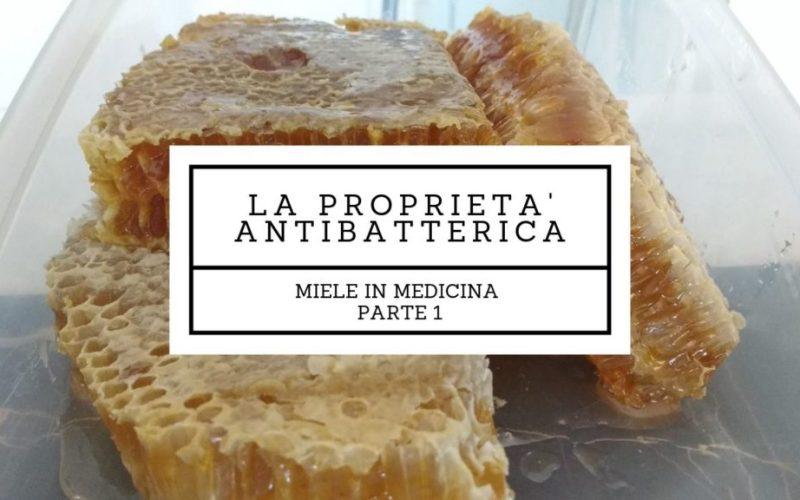 miele in medicina (1) la proprietà antibatterica