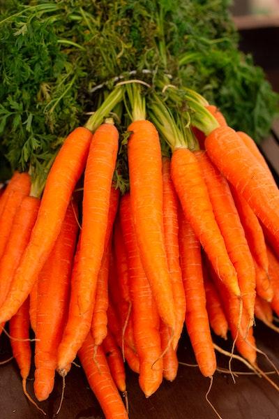 """""""Carrots"""