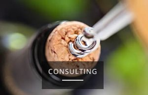 new_consulting