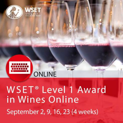 wset level 1 award in wines online