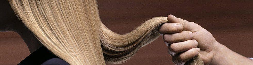 franck provost coiffure vitrines de