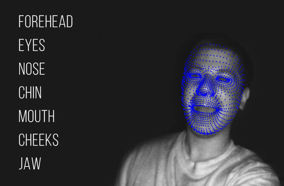 Vitruvius HD Face