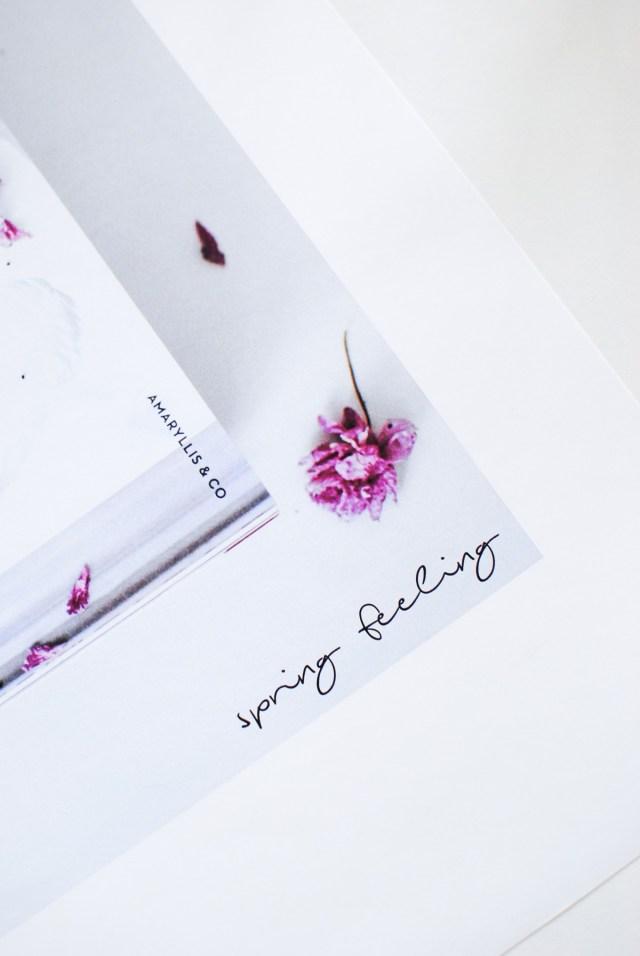 poster blomma