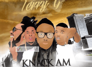 Terry-G-feat.-Wizkid-Phyno-Runtown-Knack-Am