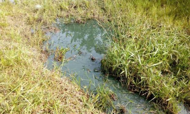 Oil Spill in Sapele Delta State 2