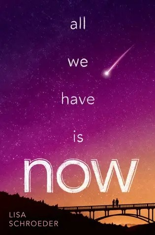 Audio Book Review | All We Have Is Now by Lisa Schroeder