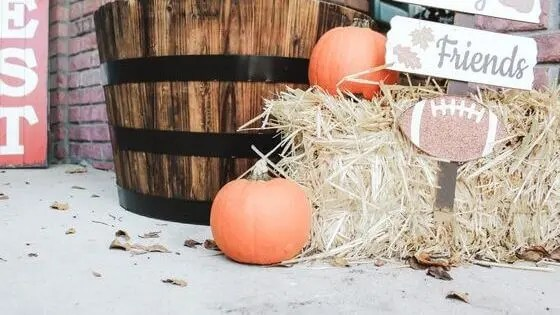 Fun Ways to Get Ready for Halloween