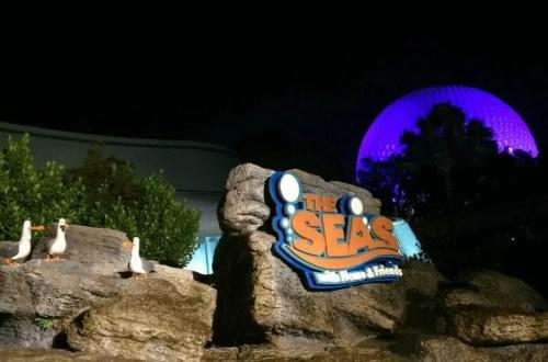 Seas with Nemo and Friends. Vivacious Views.
