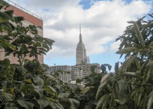 3 Days in New York City Trip Goals