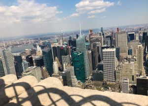 Empire State Building. Central Park View. Vivacious Views