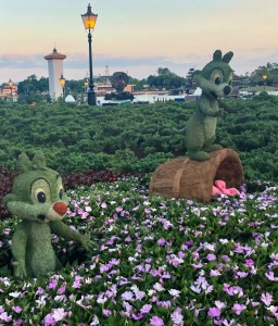 2019 Epcot Flower and Garden Festival. Chip and Dale. Vivacious Views