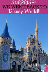 back to Disney World