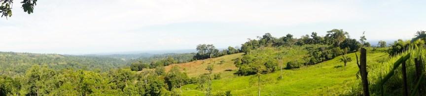 Sur del Lago es tierra fértil y excelente para el cultivo de todo, en especial del cacao