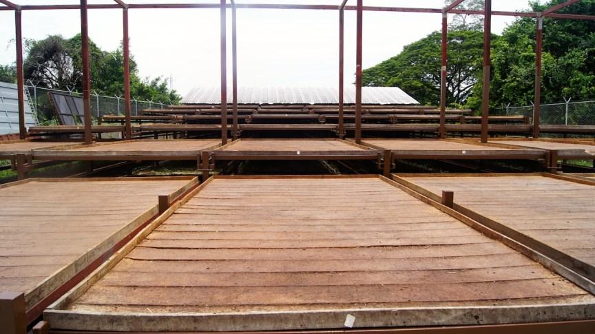 Sur del Lago cuenta con los secaderos más grandes y modernos del país