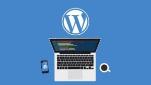 WordPress Avanzado Custom Post Tipos