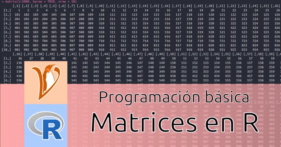 Matrices en R: qué son y cómo trabajar con ellas